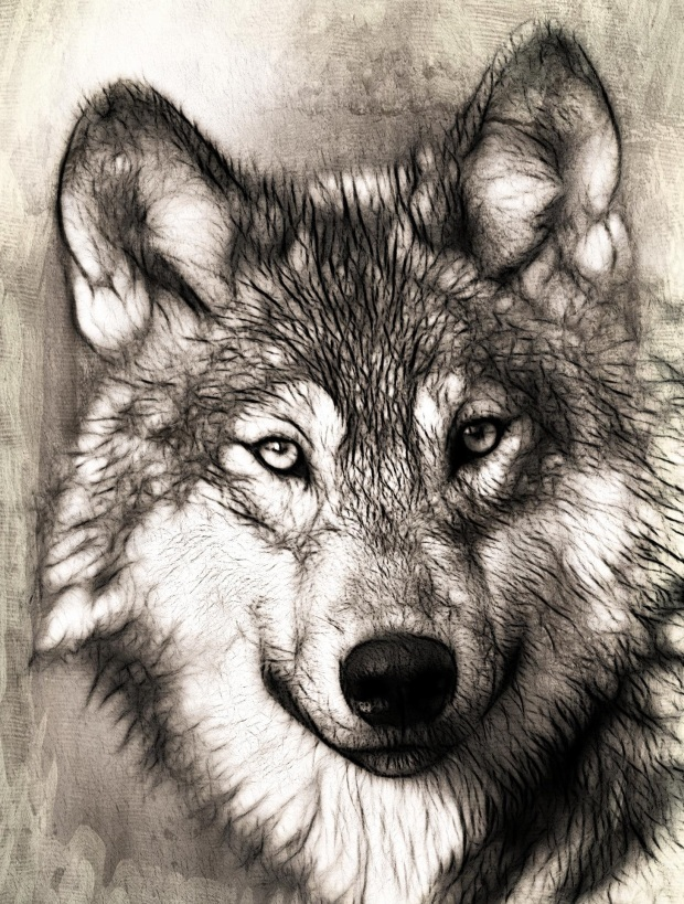 How Does Your Good Wolf Inspire Others?
